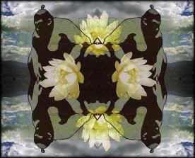 Sumo Kaleidoscope with Lotus