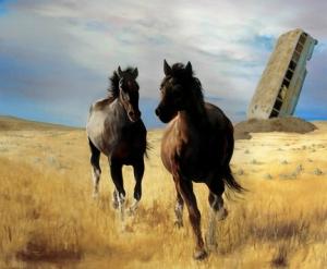 Bus_Dory_Horses
