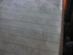 I Write on a Steno Pad