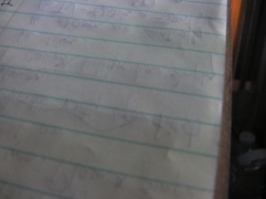I Write on a Steno Pad