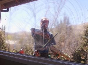 Sorg Window