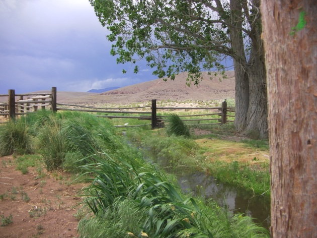 Iveson Ranch & Creek